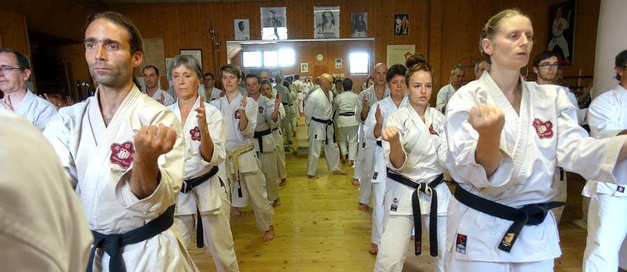 Stage des instructeurs chefs et assistants ceinture noire