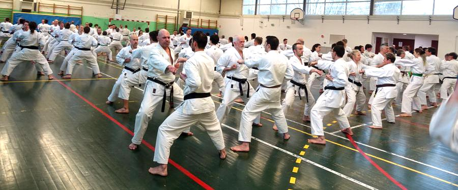 Stage international de Karaté Goju ryu Shorei kan - avril 2019