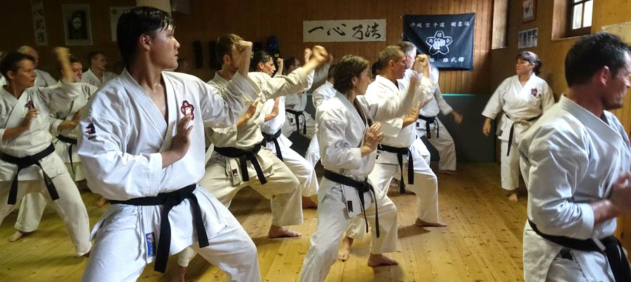 Stage des instructeurs et assistants de karaté Goju ryu Shorei kan